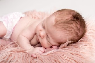 Newborn Studio photographer Perth 002