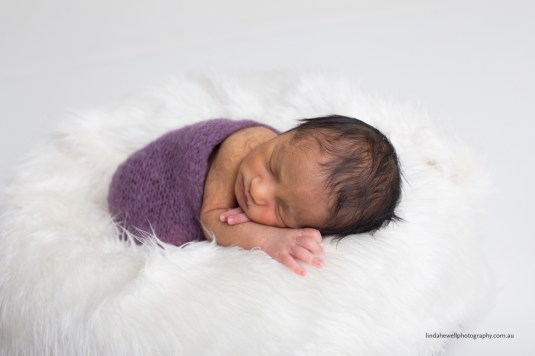 Newborn baby studio Perth 009 1