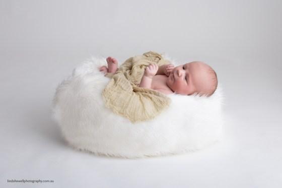 Perth Studio Newborn Photographer 012