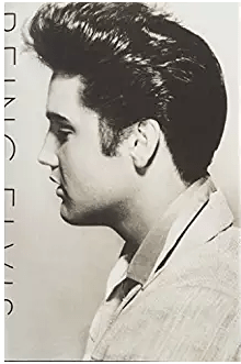 Amazon com  Being Elvis  Books.png