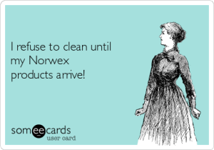 -i-refuse-to-clean-until-my-norwex-products-arrive-b8992