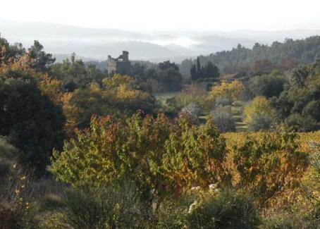 autumnnearus-8.JPG