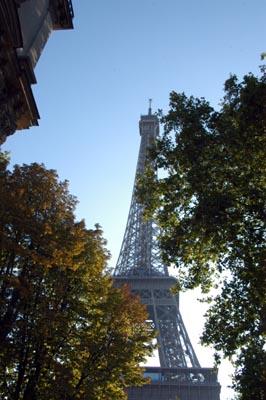 autumn-10.JPG
