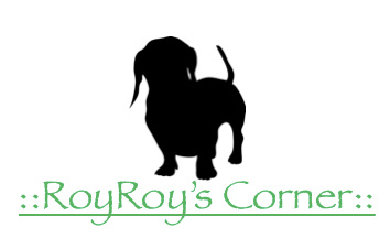 RoyRoy's Corner silhouette of short hair dachshund, gifts for dogs