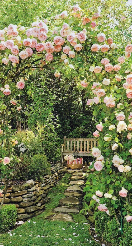 a bower of pink roses frames a bench and pink straw bag secret garden