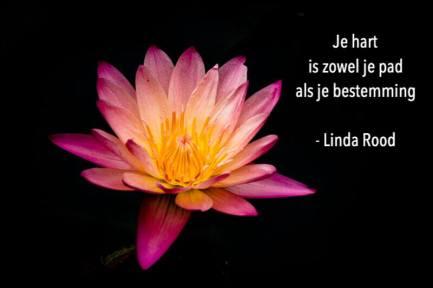 Lotusbloem met gedicht