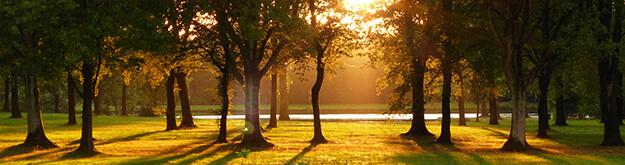 Afbeelding van Hoornse meer