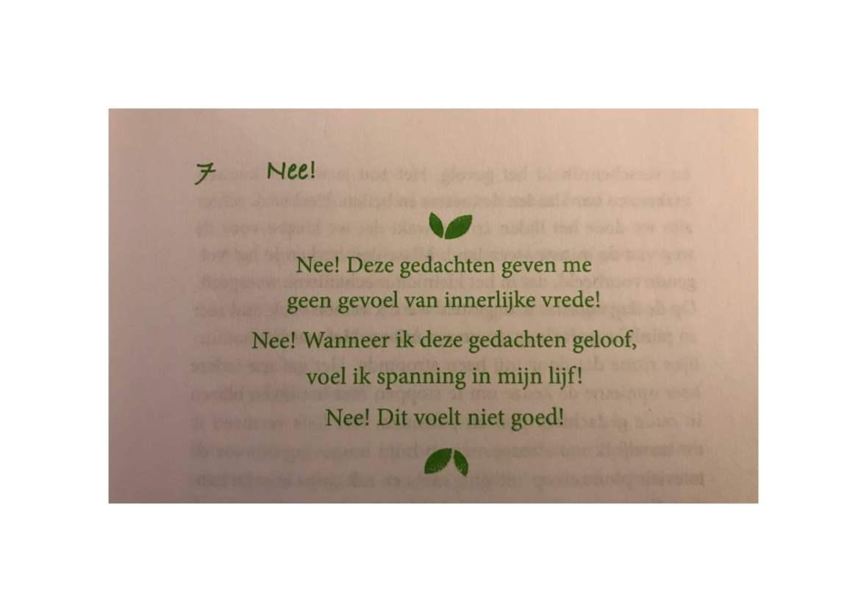 Foto van tekst uit het boek 'Het ja-gevoel'