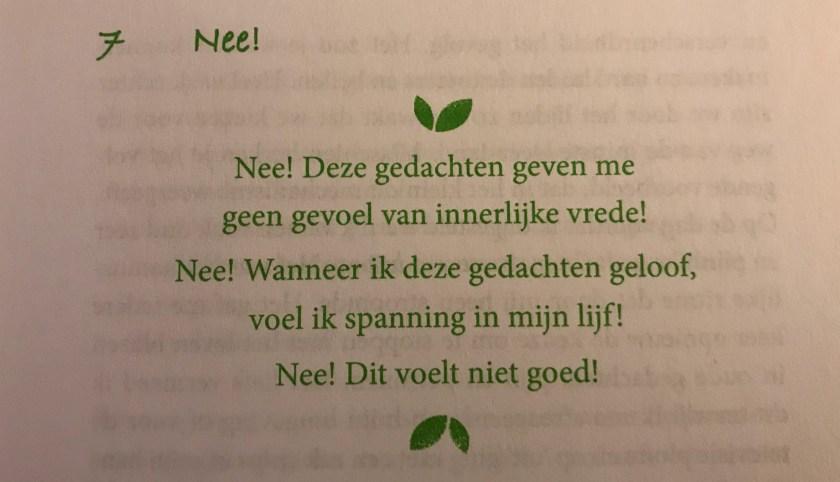 Foto uit het boek 'Het ja-gevoel'