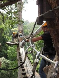 FLYING HANUMAN TREETOPTS