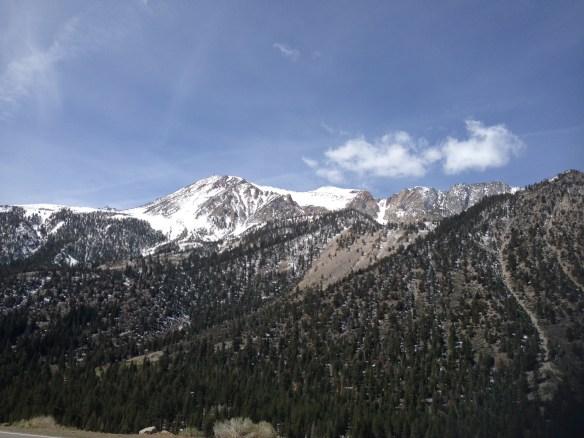 Yosemite Nasjonalpark 1