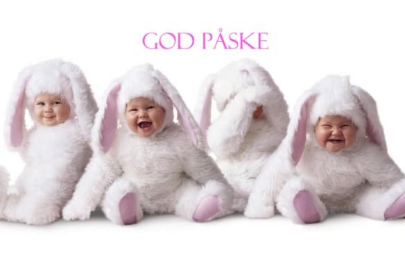 GOD PÅSKE BABYKANINER