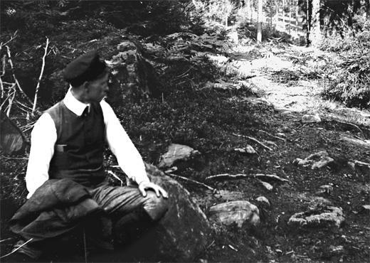 skogsvandring-1904_520