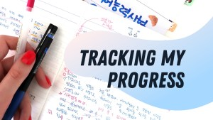 Tracking my language progress