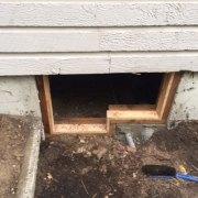 Home repairs: Lind Pest Control (Gig Harbor)