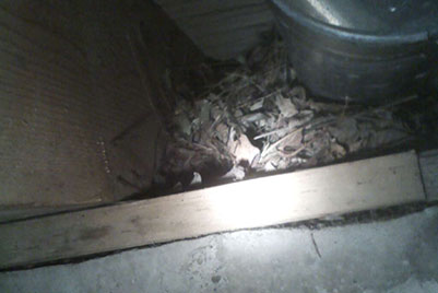 Rats Nest Under structure by heat duct