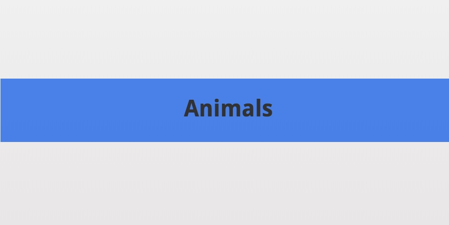 "title slide that says ""Animals"""
