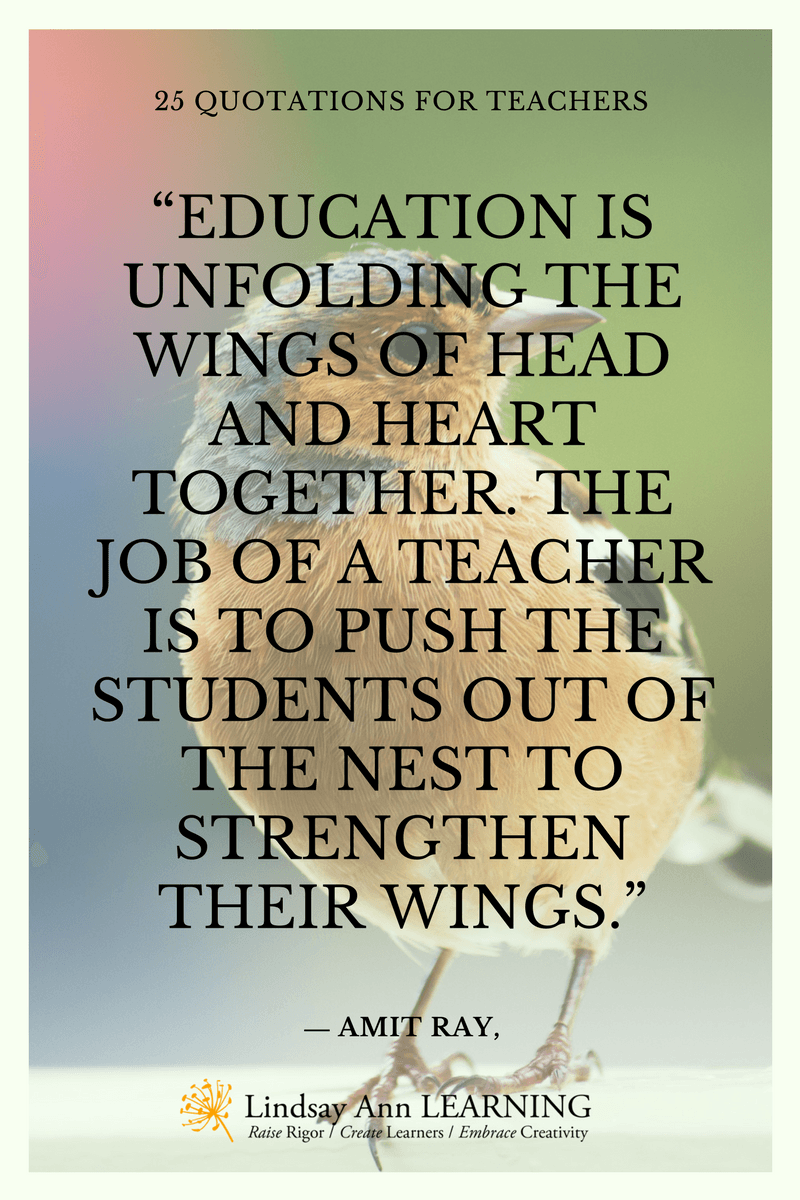 Education Quotes For Teachers 25 Best Quotes About Teaching  Lindsay Ann Learning Educational Blog
