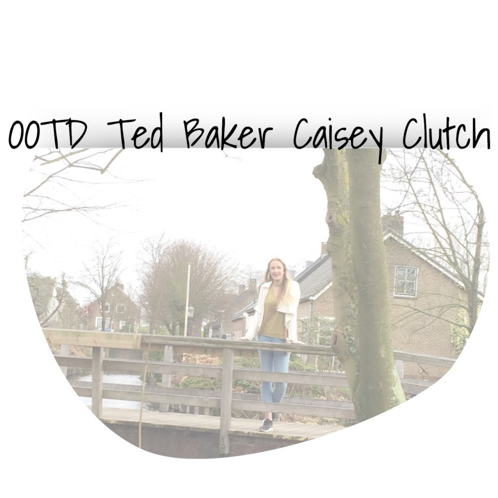 Ted Baker Caisey Clutch