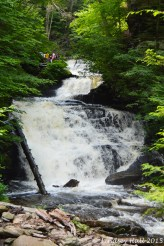 MohicanFalls