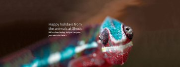 Homepage_holiday_1000x380_D