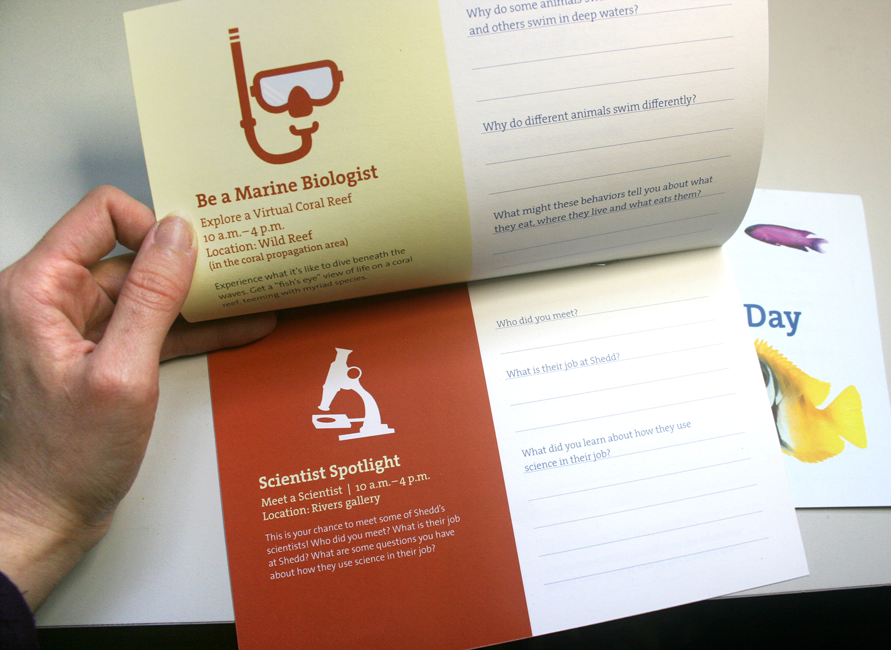 A booklet shown partially opened. Playful icons on colorful backgrounds form an informational section on the left side of the top and bottom pages, with the right sides devoted to questions and lines to answer.
