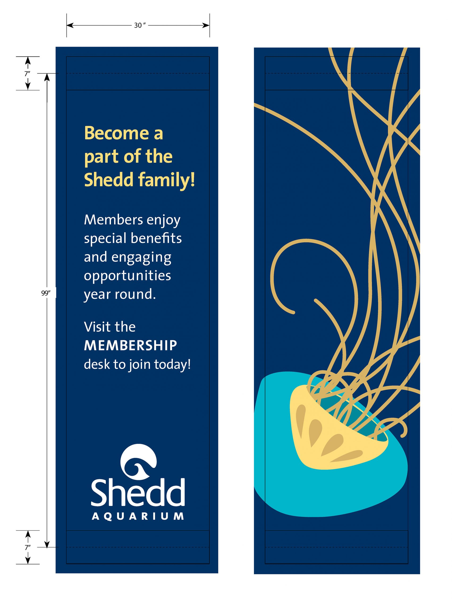 A set of street banners. The left one shows information about memberships, and the right one depicts a stylized illustrated jellyfish in teal and yellow over navy blue.