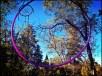hula hoops for sale bend oregon lindsikay