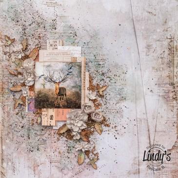 Le Bois au Cerf by Pascale B.