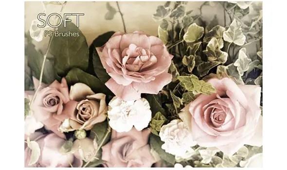 20-Soft-PS-Brushes-abr.-Vol.12---Free-Photoshop-Brushes-at-Brusheezy!