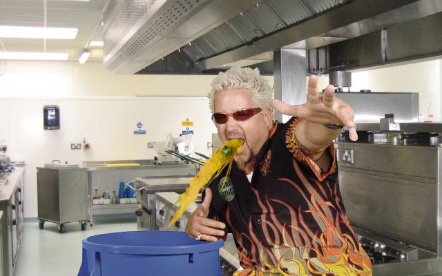 "Fieri, despite vomiting, still managed to stay ""gnarly"" and ""totally rad"". - (AP Photo)"