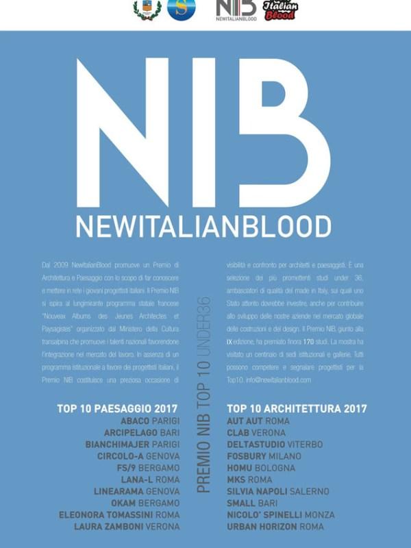 NIB Award 2017