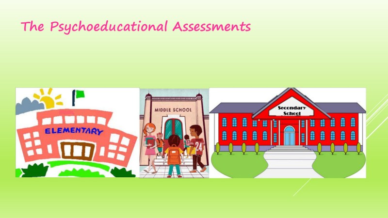 The Process of Psychology Assessments in schools 16