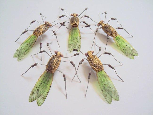 entomo14