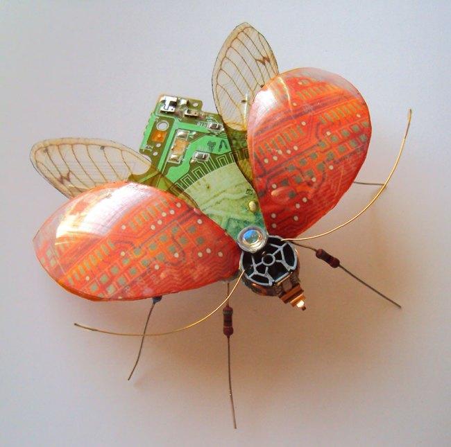 entomo7