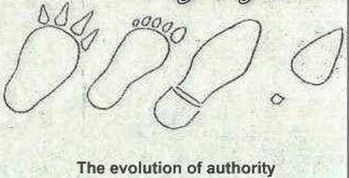 Η εξέλιξη του ανθρώπου24