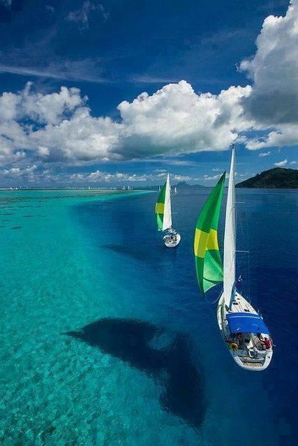 Εντυπωσιακές εικόνες σε διάφανα νερά2