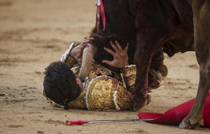 Ο ταύρος τον εκδικήθηκε3