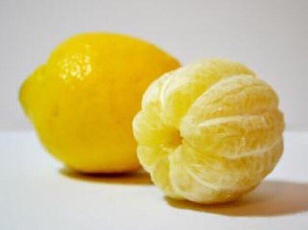 kovei-lemoni-trivei-fridia-tis-molis-mathete-logo-kanete-eseis-6