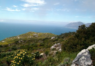 Hiking in Kalk Bay