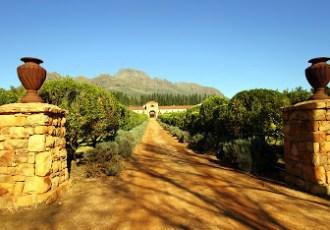 Stellenbosch: Wine and chocolate tasting