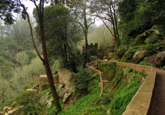 Sintra: A palace in the mist