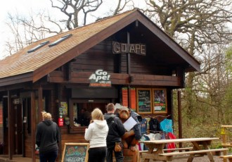 An adventurous afternoon with Go Ape