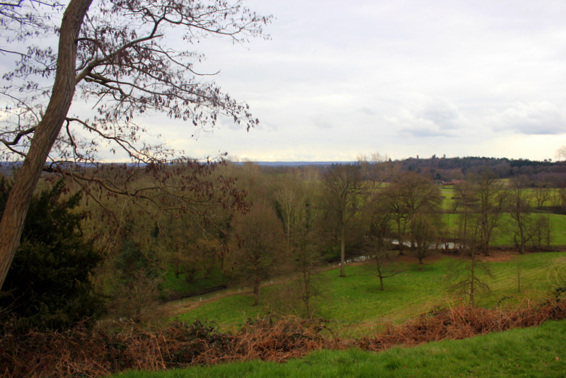 View from Painshill's Roman temple