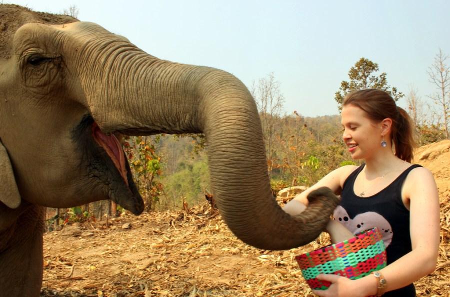 Kasha in Thailand
