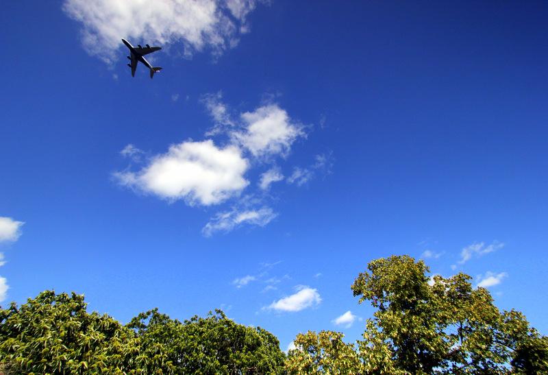 Planes flying over Kew Gardens