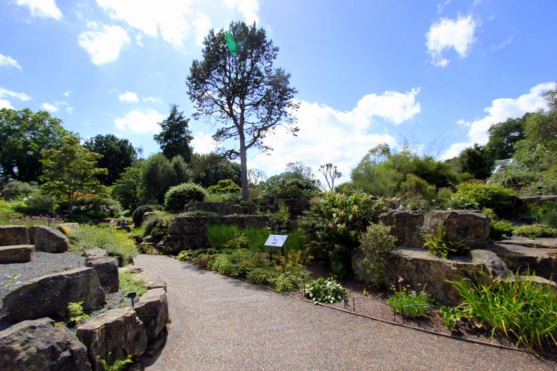 Alpine House gardens
