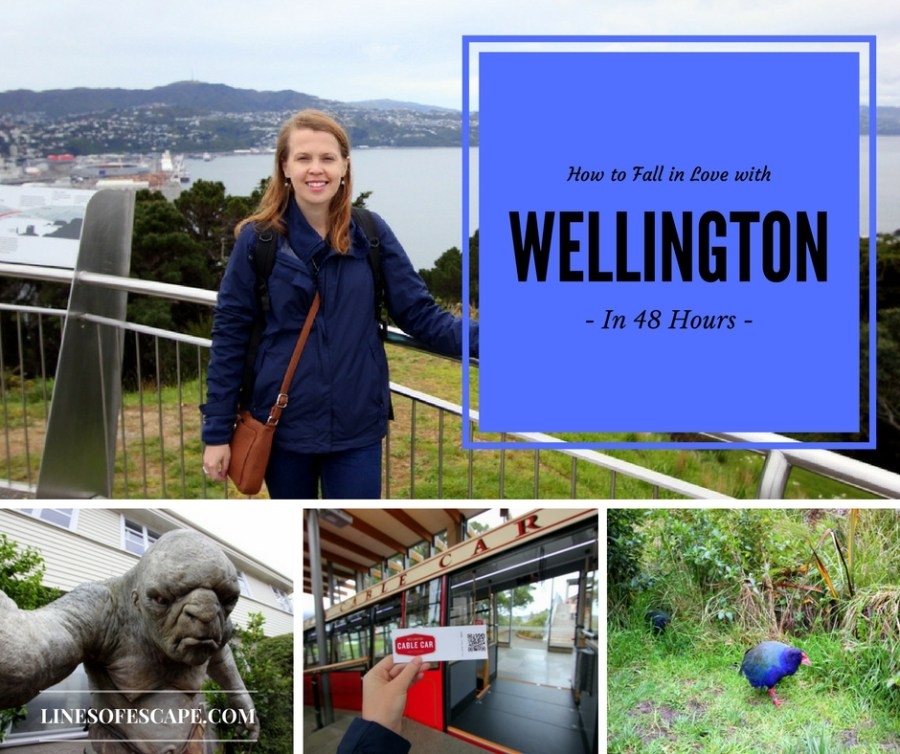 How to Fall in Love with Wellington in 48 Hours