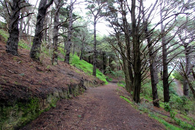Hobbit Hideaway trail