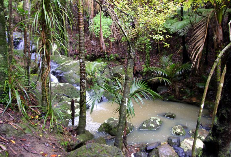 Cascades, Waiheke